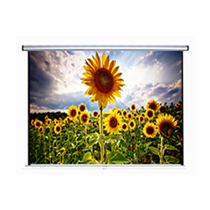 Anchor ANDMV300 Projector Screen