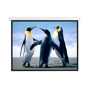Anchor ANWMB-110HD Projector Screen