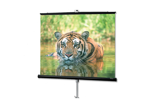 Draper Consul Projection Screen