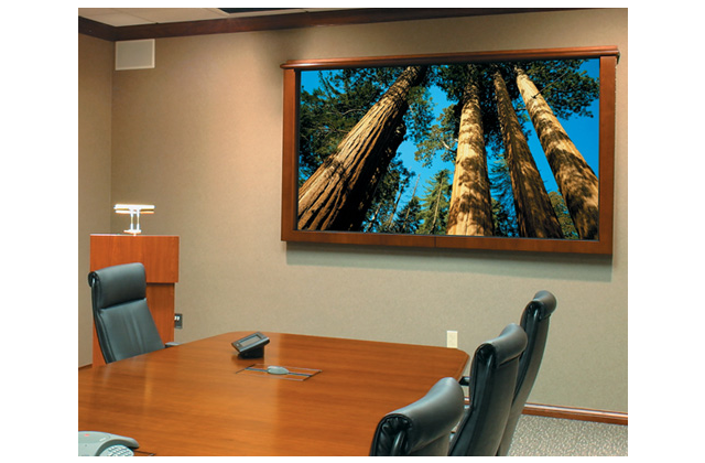Draper Irus Projection Screen